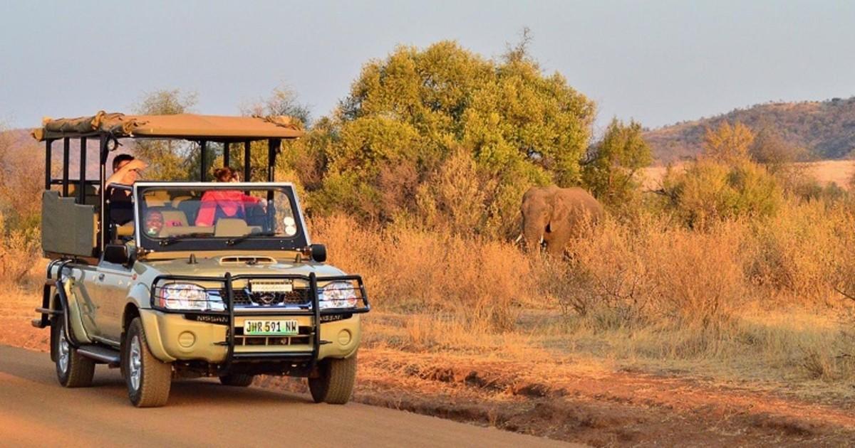 Pilanesberg Full-Day Shared Safari with Sun City Visit