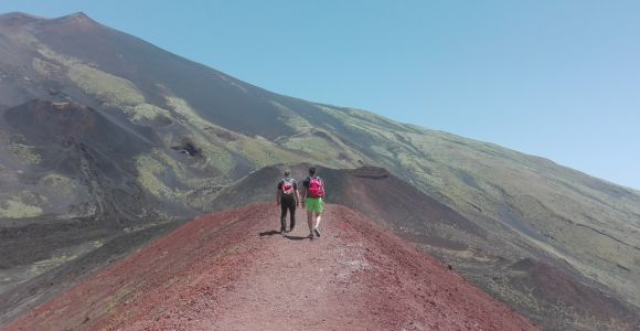 From Catania: Etna Nature and Flavors Half-Day Tour