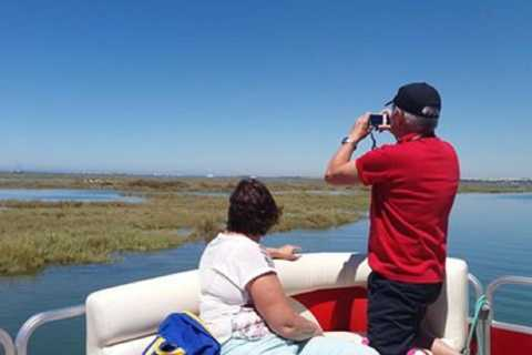 Faro: Private 1-Hour Ria Formosa Experience