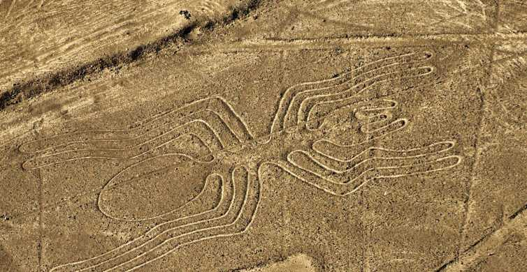 Lima: Private Nazca Lines & Huacachina Oasis with Lunch