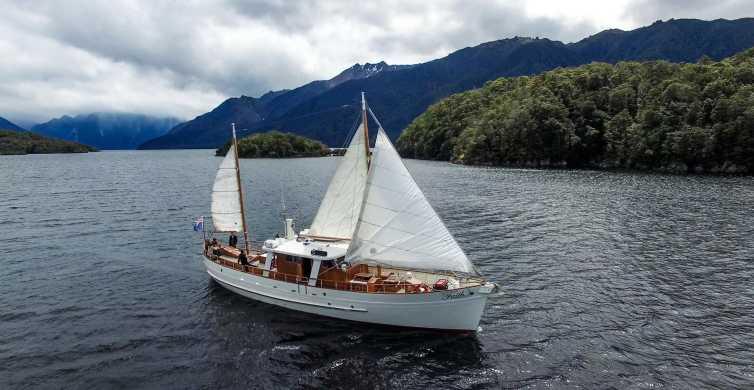 Lake Te Anau: 3-Hour Scenic Cruise and Walk with Morning Tea