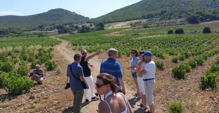 Atenas: tour privado de vinos y almuerzo en la playa