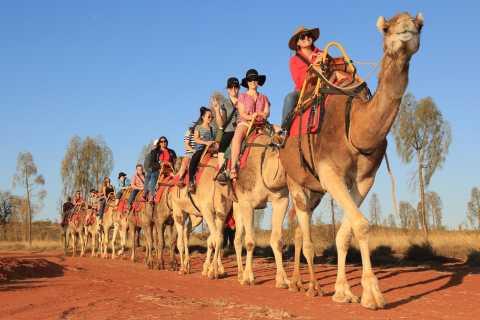 Uluru: Sunrise Camel Safari and Freshly Baked Bread Damper