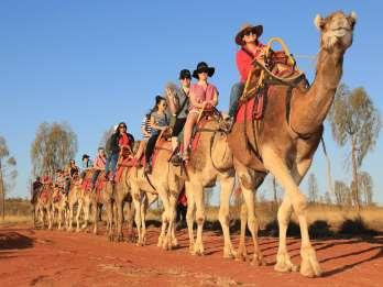 Uluru: Kamelsafari bei Sonnenaufgang & frisches Brot