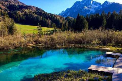 Depuis Bled: excursion au parc national du Triglav