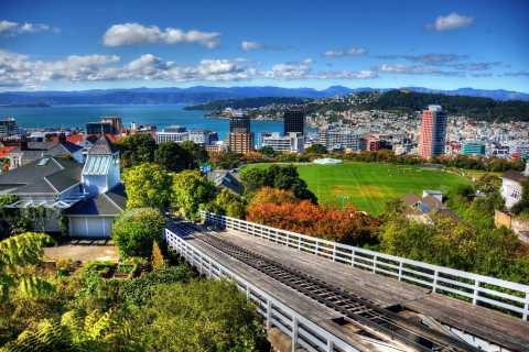 Wellington Guided Sightseeing Tour