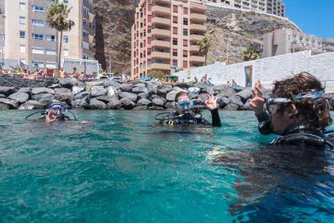 Santa Cruz de Tenerife: PADI Introductory Dive