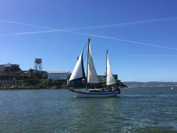 Ab San Francisco: Segeltörn durch die Bucht mit Getränken