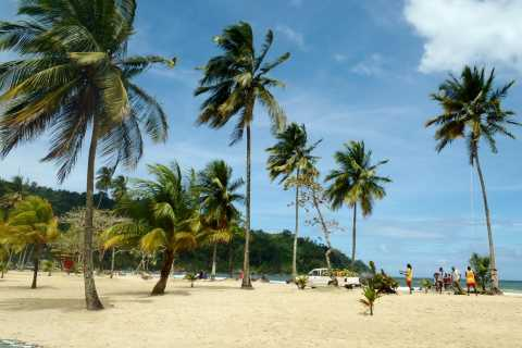 Maracas: Day Trip to Maracas Beach from Port of Spain