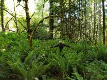 Victoria: Geführter Naturspaziergang im Francis King Park