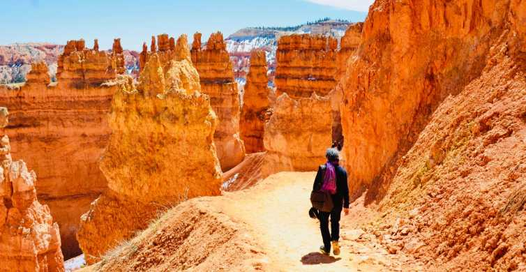 Las Vegas: Zion and Bryce Canyons Small Group Tour