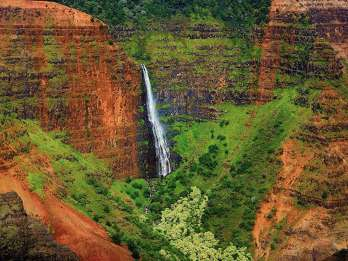 Kaui: Halbtägige Waimea Canyon Bustour