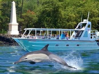 Big Island: Delfin- und Riff-Schnorcheln