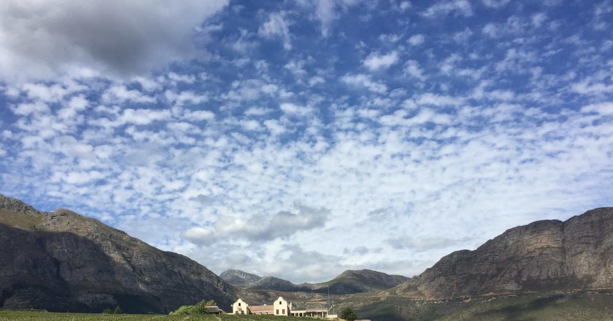 Full-Day Private Wine Route Tour