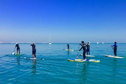 Valencia: 1.5-Hour Stand Up Paddle Board Lesson