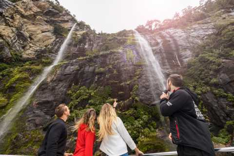 Milford Sound: Cruise, Underwater Observatory, and Lunch