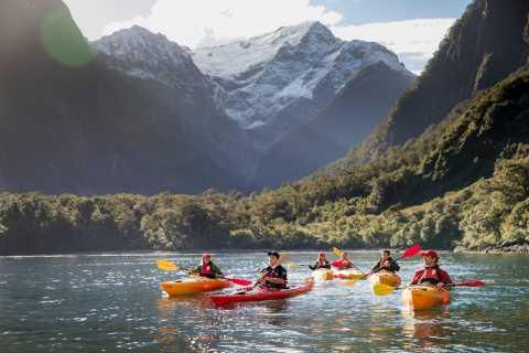 Croisière et kayak Milford Sound
