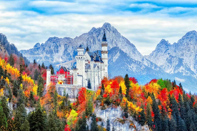 Ab München: Tagesausflug zum Schloss Neuschwanstein