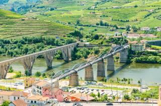 Douro-Tal: Tagestour mit Weinprobe und Mittagessen