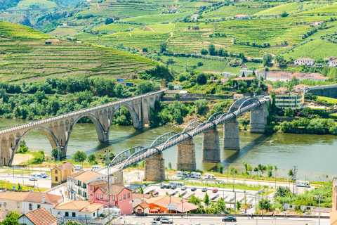 Douro Valley Full-Day Tour with Wine Tasting & Lunch