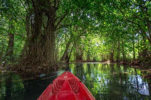 Krabi: Half-Day Blue Lagoon Kayaking at Klong Srakaew & ATV