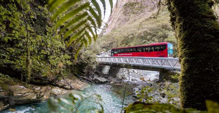 From Te Anau: 1-Day Milford Sound Coach & Cruise