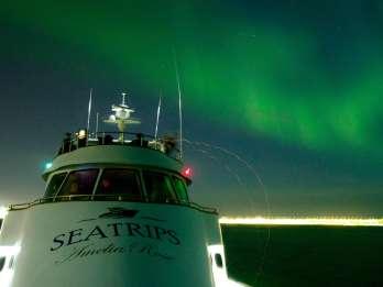 Reykjavik: Per Luxus-Yacht zu den Nordlichtern