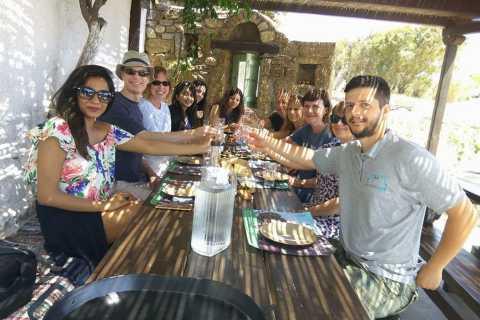 Mykonos: tour del lato più autentico dell'isola
