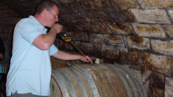 Desde Budapest: tour de vino de Etyek con comida