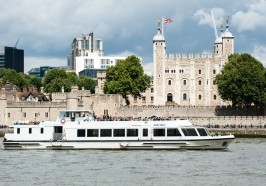 What to do in London - London: Westminster to Greenwich River Thames Cruise