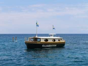 Big Island: Umweltfreundliche Tour mit Glasboden-Boot