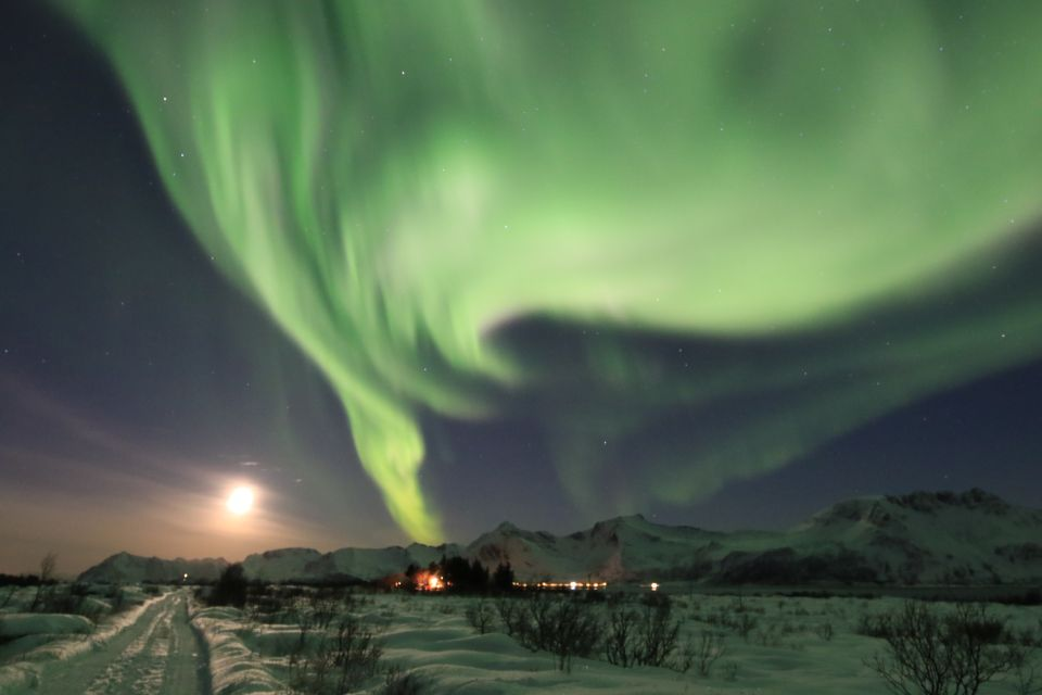Nordlichter Tour auf den Lofoten