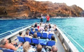 Maui: Molokini Wild Eco Adventure from Maalaea Harbor