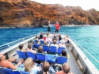 Maui: Molokini Wild Eco Adventure ab Maalaea Hafen