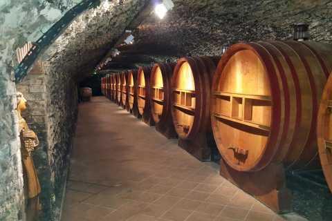 From Avignon: Private Wine Tour in the Cotes du Rhone