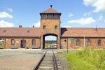 Auschwitz & Wieliczka Salt Mine Guided Tour from Krakow