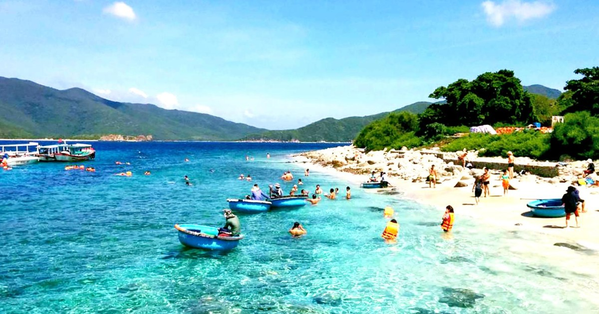 Nha Trang: Hòn Mun and Mot Island Scuba Diving - Nha Trang, Vietnam |  GetYourGuide