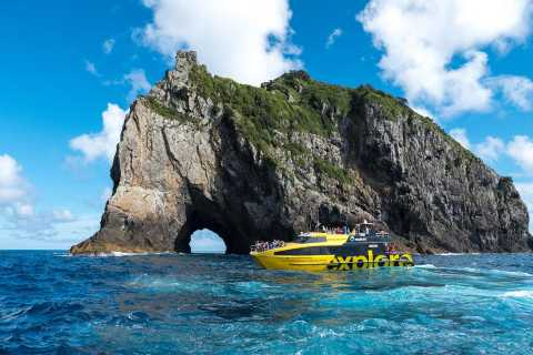 Bay of Islands: Bay Discovery Cruise with Island Stop-Over