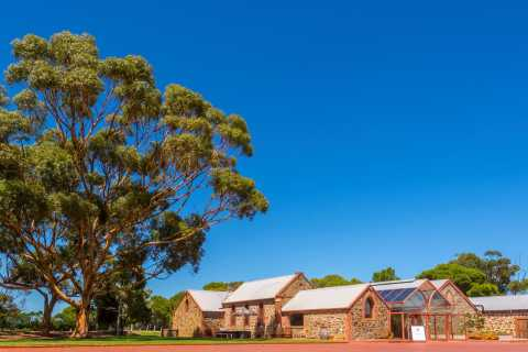 Adelaide: McLaren Vale and Glenelg Wine Tasting Tour