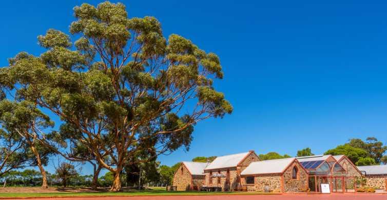 Adelaide: McLaren Vale og Glenelg Wine Tasting Tour