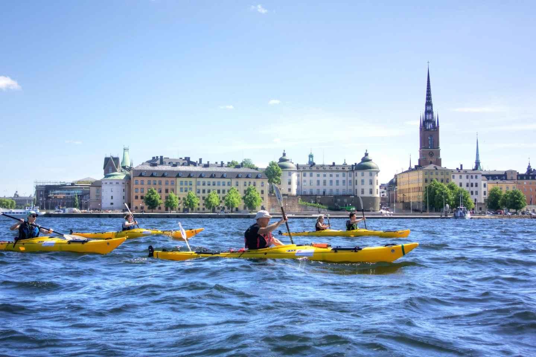 Stockholm: Guided Kayak City Tour & Optional Midsummer Meal