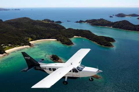 Flug nach Kap Reinga: Panoramaflug & 2,5-stündige Führung