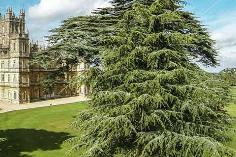 Londres: Highclere Castle Express
