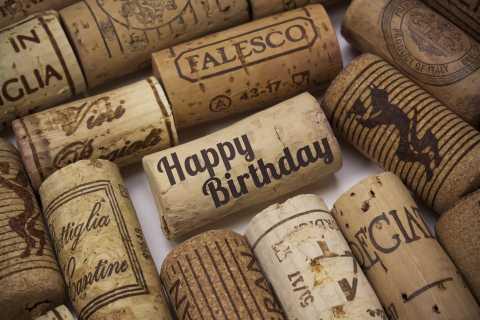 Civitavecchia: Full-Day MUVIS Wine Experience