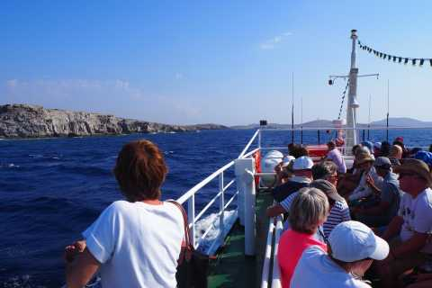 From Mykonos: Transfer to Delos Island by Boat