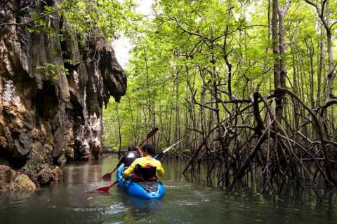 Krabi: Private Sea Kayaking in Ao Thalane and Hong Island