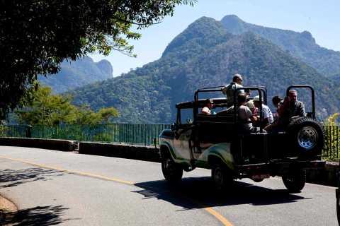Rio: Half-Day Jeep Tour på Floresta da Tijuca