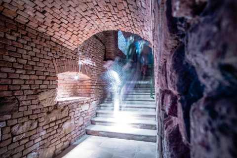 Vienne: Dégustation de vin local dans une cave à vin historique de Rome