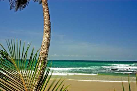 Port of Spain: Coastal Tour of Trinidad