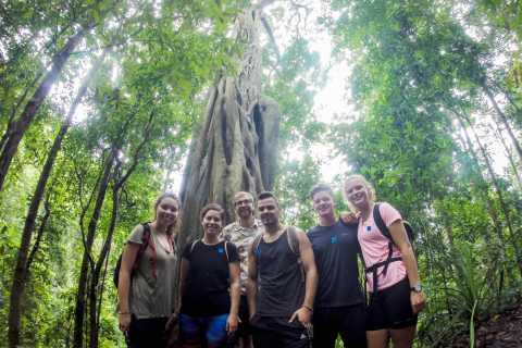 Chiang Mai: 6-Hour Doi Pui National Park Summit Hike